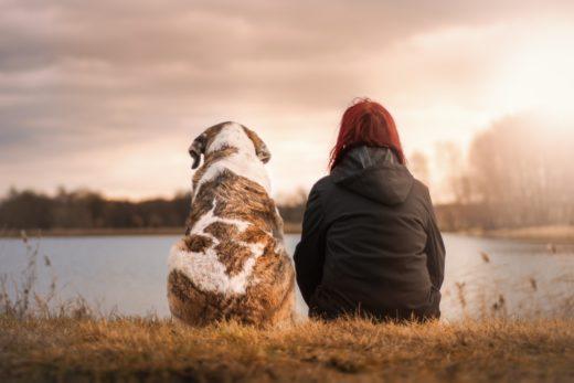 Pies - dlaczego to najlepszy przyjaciel?