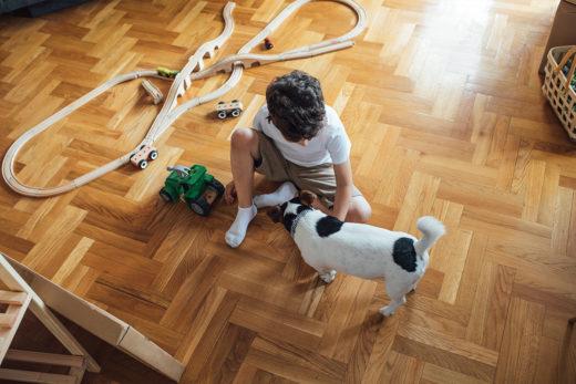 Jak bawić się z psem w domu?
