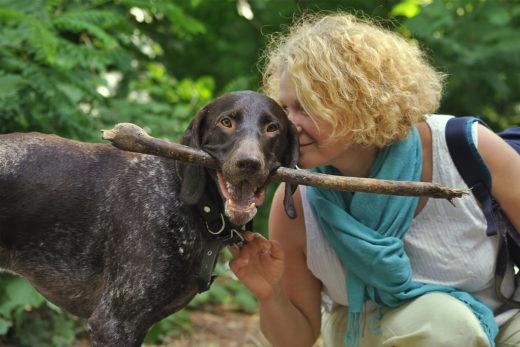 6 powodów dla których warto mieć psa